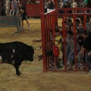 """CONFIRMADO: Valencia prohíbe la celebración del """"bou al carrer"""" y """"bou en corda"""""""