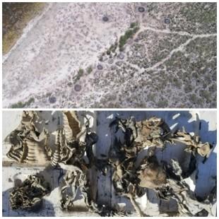 Drones captan hornos de carbón hechos por haitianos en parque protegido de RD, tambien hayan esqueletos de iguanas